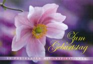 Foto-Postkarten-Buch-Zum Geburtstag - aus 95410/2