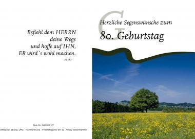 Faltkarte 80. Geburtstag - Landschaft 1